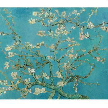 Ooglook: Inspiratie van Van Gogh