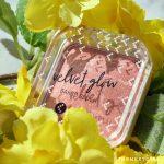 Kruidvat Velvet Glow Baked Blush verpakking